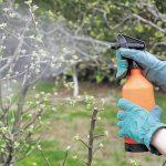 Борьба с болезнями и вредителями в саду